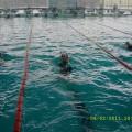 Plivački klub Kikinda - 1625.jpg
