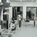 Fitnes centar teretana Perfect Line Palilula - 2439.jpg