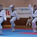 Taekwondo klub Vidikovac Beograd - 2738.jpg
