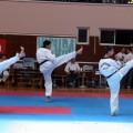 Taekwondo klub Vidikovac Beograd - 2739.jpg