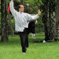 Wushu Kung Fu klub Laohu Novi Sad - 3434.jpg