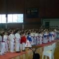 Karate klub ''Železnicar'' Inđija - 3461.jpg