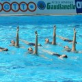 Klub sinhronog plivanja Delfin - 3613.jpg