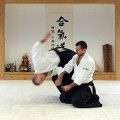 Aikido Klub Yin Yang Vozdovac - 4173.jpg