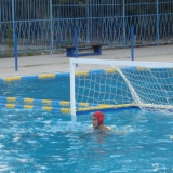 Vaterpolo klub Zemun Beograd