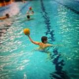 Plivački klub Swim Way - 4934.jpg
