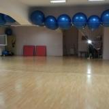 Teretana Spartak i fitnes studio Labudovo brdo