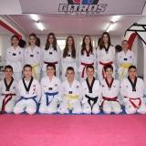 Taekwondo klub Gitros Novi Sad