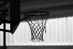 THE EFFECTS OF AN ADAPTED BASKETBALL TRAINING PROGRAM ON THE PHYSICAL FITNESS OF ADOLESCENTS WITH MENTAL RETARDATION: A PILOT STUDY