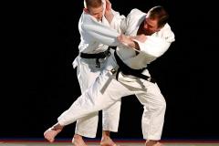 Značaj repetitivne snage stajne (insistirajuće) noge kod džudista